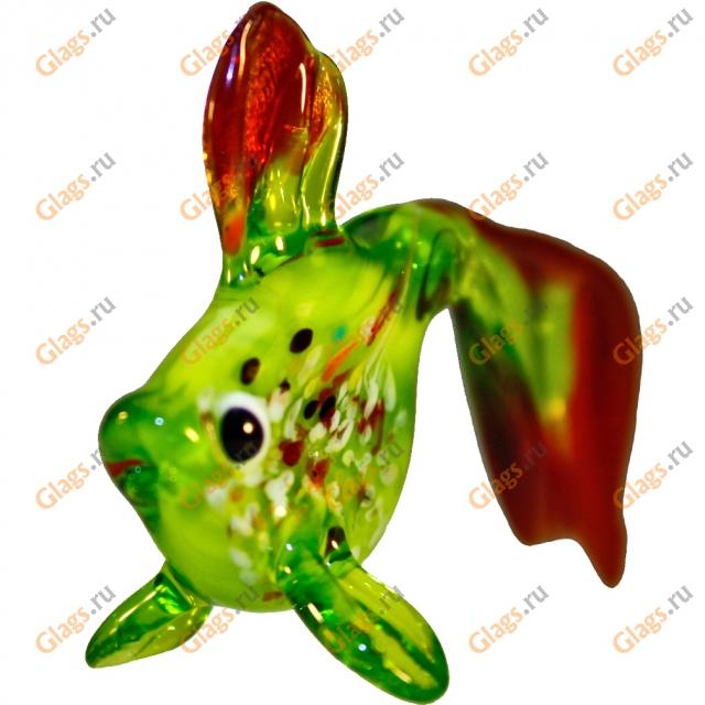 Рыба длиннохвостая вид 2